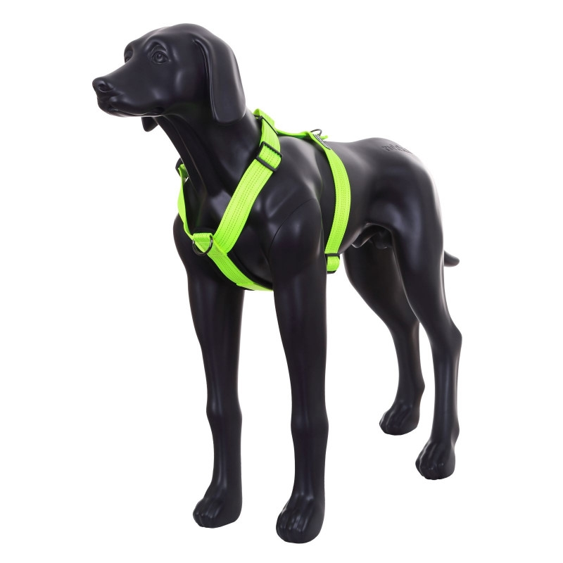 form-neon-y-harness-yellow