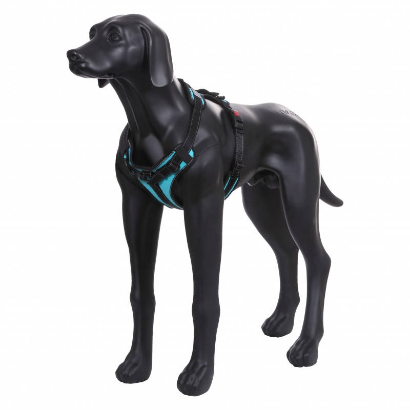 solid-harness-turquoise