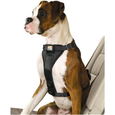 hundsäkerhetsbälte