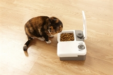 88624_petsafe_2meal_pet_feeder_cat