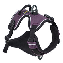 AlpineReflectiveHarness_Dahlia_Side2_1060-0404-603