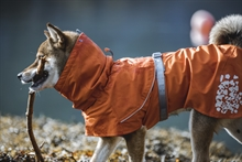 Hurtta_Monsooncoat_Buckthorn-18
