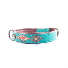 Janis 0,98inch dogcollar dogwithamission 2