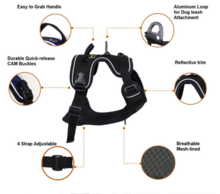 OD_-Alphine_reflective_harness_1