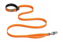 flat_out_leash_orange_sunset