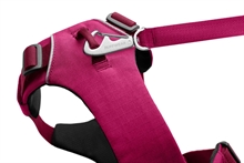 front_range_harness_hibiscus_pink_new_3