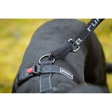 hike-running-leash-grey-2