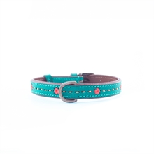 janis 0,79inch dogcollar dogwithamission