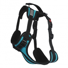 solid-harness-turquoise-1